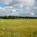 prairie+vl