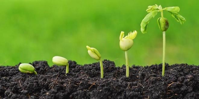 Une agriculture vivante
