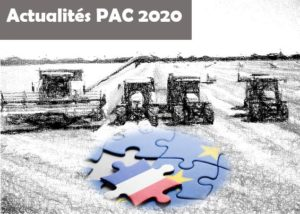 illustration-actuPAC2020